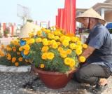 Vệ sinh Nghĩa trang Liệt sĩ tỉnh đón Tết Canh Tý 2020