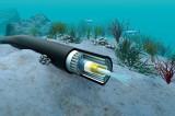 Sẽ khắc phục xong sự cố cáp quang biển AAG trước Tết Nguyên đán