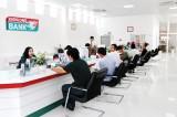 Kienlongbank giảm lãi suất cho vay 3%, đồng hành cùng khách hàng trồng trái cây chịu ảnh hưởng từ dịch virus Corona