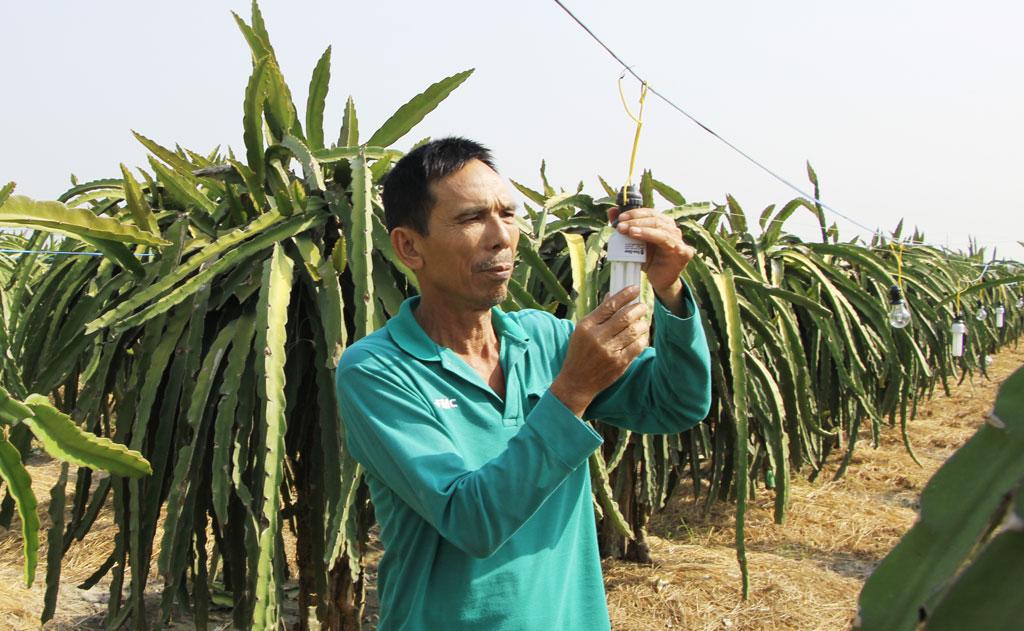 Ông Trần Văn Bảy tham gia tổ hợp tác sản xuất được 3 năm, thấy mình thu được nhiều lợi ích
