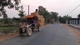 Cần xử lý nghiêm tình trạng xe quá tải mùa thu hoạch lúa