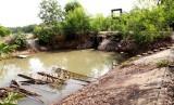 Cần Đước: Cống Mương Lá xuống cấp, nước mặn vào đồng ruộng