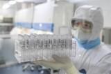 Vắcxin phòng bệnh COVID-19 đã đạt thành công bước đầu