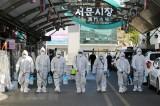 Khẩn trương triển khai bảo hộ công dân Việt Nam tại Hàn Quốc