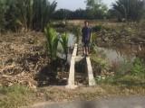 Sẽ được giữ lại cây cầu bắc qua kênh Bào Sình ở xã Phước Vĩnh Đông