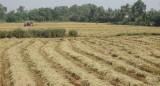 Long An: Gần 420.000ha được cấp Giấy chứng nhận quyền sử dụng đất