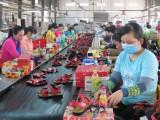 Long An: Tháng 2, chỉ số sản xuất công nghiệp giảm do ảnh hưởng dịch Covid-19