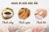 Chữa hắc lào bằng muối và bài thuốc Ngưu Bì Giải Độc Ẩm