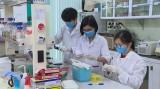 Việt Nam chế tạo thành công bộ sinh phẩm phát hiện virus SARS-CoV-2