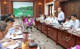 Xây dựng và thực hiện Đề án đầu tư phát triển chuỗi trồng, chế biến và xuất khẩu thanh long