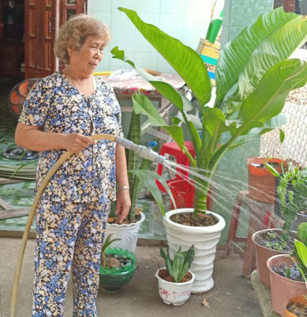 Gia đình bà Nguyễn Thị Trong vươn lên thoát nghèo, ổn định cuộc sống