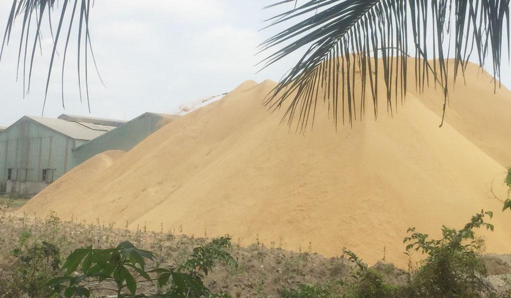 """Bụi trấu, cám từ Công ty TNHH MTV Dũng Tân Tây thải ra một bãi đất trống chất đầy như núi rồi cứ để bụi """"tung hoành"""" tự do thổi bay vào nhà người dân quanh khu vực"""