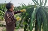 Bài 2: Điểm sáng trong công tác giảm nghèo