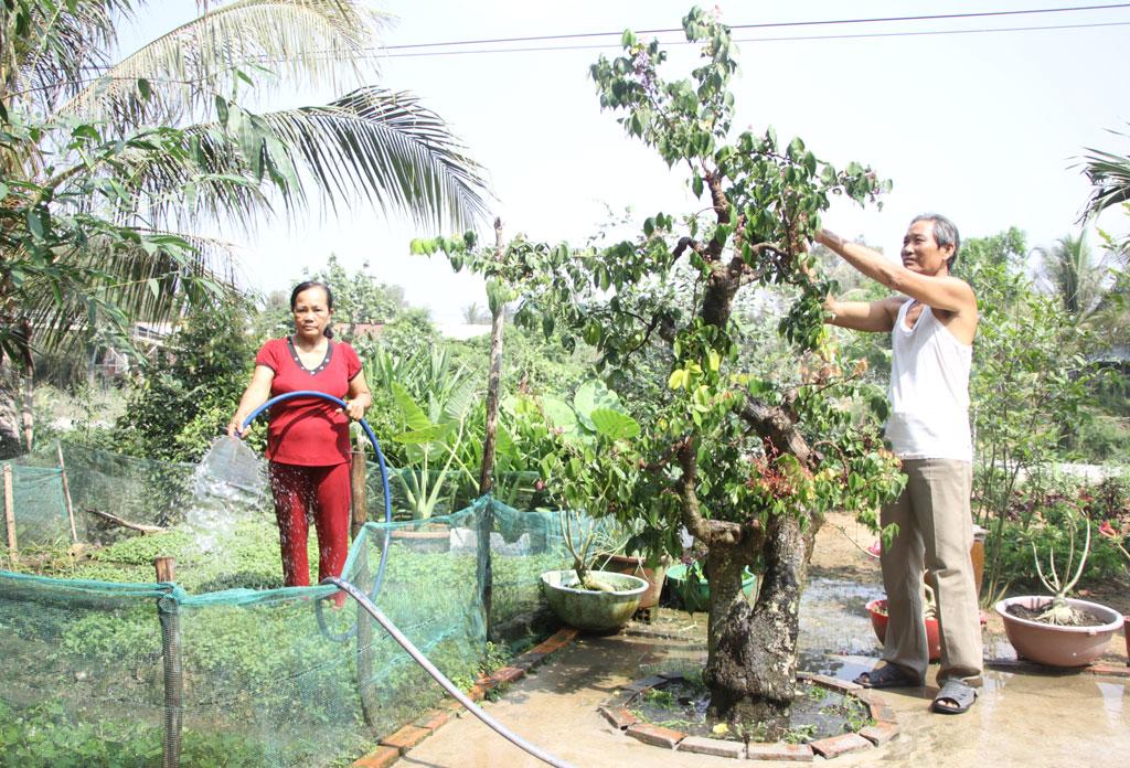 Mỗi ngày, vợ chồng ông Nguyễn Văn Bá đều dành chút thời gian chăm sóc cây cảnh và vườn rau xanh quanh nhà, vừa tạo cảnh quan, vừa là thú vui khi lớn tuổi