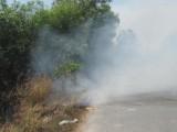 Long An chú trọng phòng, chống cháy rừng mùa khô