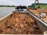 Cần Thơ: Tạm giữ 7 sà lan đất sét nghi khai thác trái phép trên sông Hậu