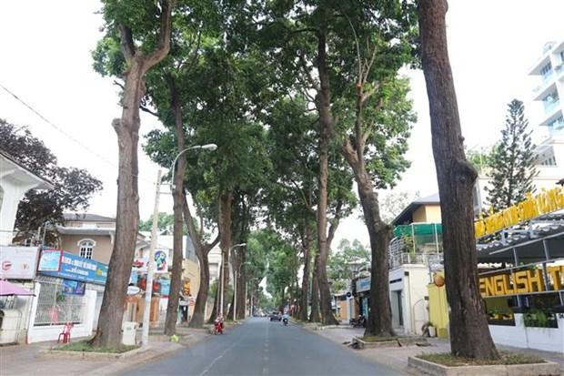 Đường Trần Quốc Thảo, quận 3, Thành phố Hồ Chí Minh vắng bóng người và phương tiện giao thông. (Ảnh: TTXVN)