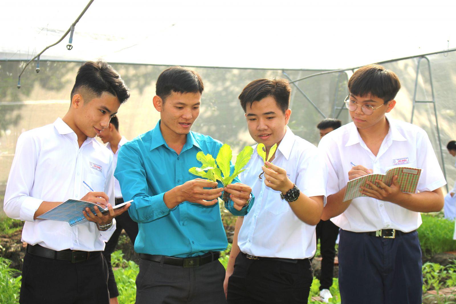 Anh Lê Trọng Tình hướng dẫn học sinh trồng, chăm sóc rau, màu ứng dụng công nghệ cao