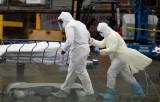 Mỹ: New York tới đỉnh dịch COVID-19 với số ca tử vong tăng trở lại