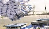 Thủ tướng yêu cầu thanh tra đột xuất việc xuất khẩu gạo