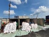 Thóc, gạo nếp được xuất khẩu bình thường