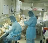 Thêm 3 ca tái dương tính với virus SARS-CoV-2 tại TP Hồ Chí Minh