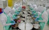 Kiên Giang tăng tốt trong thu nhập xuất khẩu bốn tháng