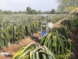 Máy phun thuốc đa năng mang lại lợi ích cho nông dân