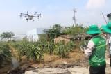 Phát triển nông nghiệp ứng dụng công nghệ cao - Hướng đi bền vững