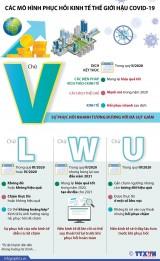 [Infographics] Các mô hình phục hồi kinh tế thế giới hậu COVID-19