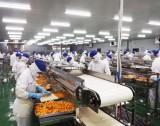 Vừa chống dịch, vừa nỗ lực khôi phục sản xuất, kinh doanh