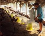"""Người chăn nuôi cần """"phòng bệnh hơn chữa bệnh"""""""