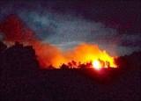 Tân Thạnh: Cháy ruộng tràm gần Cụm công nghiệp Hoàng Hương