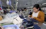'EVFTA và EVIPA cung cấp các lợi ích bổ sung cho nền kinh tế Việt Nam'