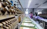 Xuất xứ hàng hóa - yêu cầu quan trọng để hưởng ưu đãi thuế quan EVFTA