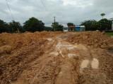 Long An: Tiếp nhận thông tin vi phạm đất đai từ đường dây nóng