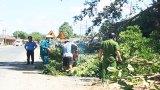 Thạnh Hóa: Ra quân lập lại trật tự hành lang an toàn đường bộ