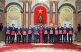 Phó Chủ tịch nước trao quyết định bổ nhiệm 12 đại sứ nhiệm kỳ 2020-23