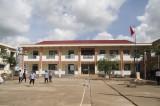 Quản lý cây xanh trong trường học
