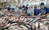 Ứng dụng công nghệ cao vào sản xuất cá tra xuất khẩu