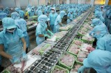 Xuất khẩu thủy sản giảm mạnh do ảnh hưởng của dịch Covid-19