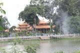 Ngôi chùa cổ dưới tán cây di sản