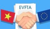 Chỉ định các cơ quan đầu mối để triển khai Hiệp định EVFTA