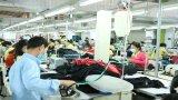 Tập trung thực thi có hiệu quả Hiệp định thương mại tự do Việt Nam-Liên minh châu Âu