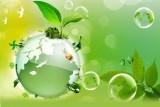 Trách nhiệm với môi trường sống