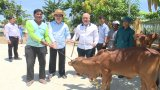Nguyên Chủ tịch nước - Trương Tấn Sang trao 100 con bò tại huyện Vĩnh Hưng