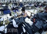 Việt Nam và Ấn Độ thúc đẩy hợp tác trong ngành dệt may