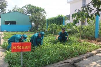 Ban Chỉ huy Quân sự huyện Tân Thạnh: Nhiều mô hình hay, cách làm sáng tạo