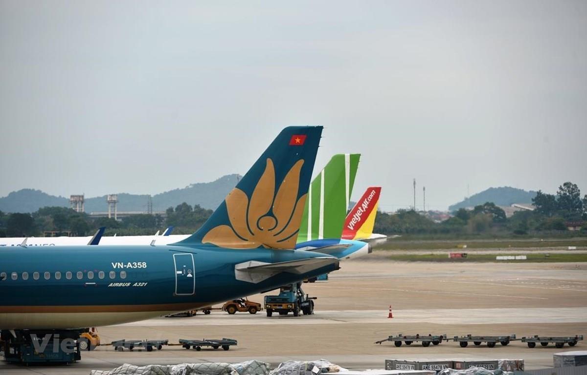 Các hãng hàng không như Vietnam Airlines, Vietjet Air hay Bamboo Airways. (Ảnh: CTV/Vietnam+)