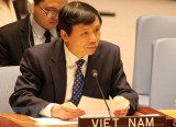 Việt Nam kêu gọi các bên tại Yemen nối lại đàm phán hòa bình